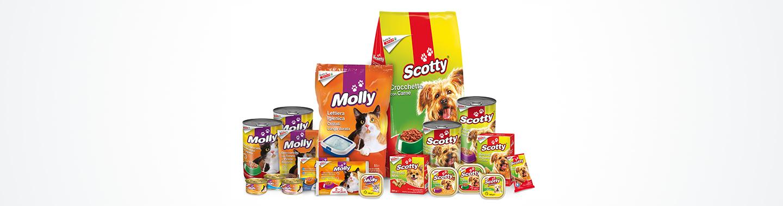 Linee di prodotti a marchio di cibo per cani e gatti Molly e Scotty | Despar Italia