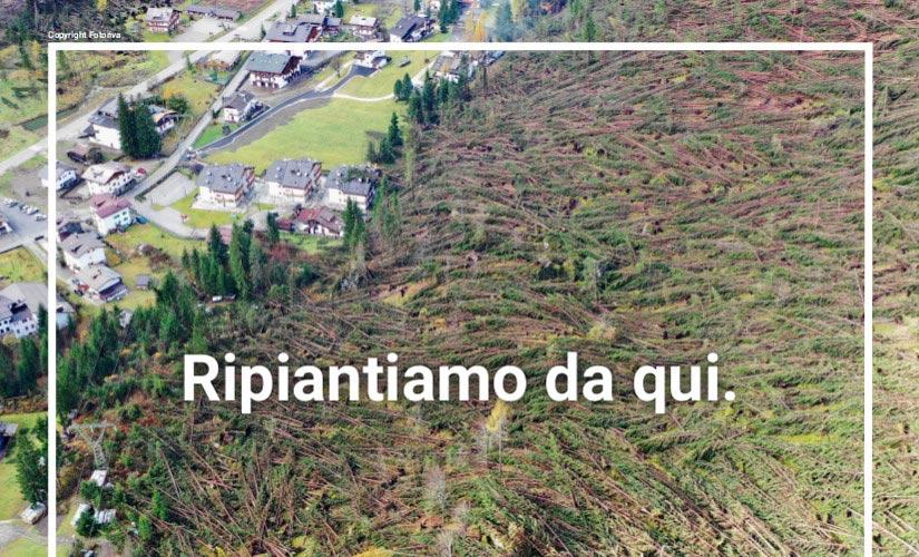 Ripiantiamo da qui: aiuto alla montagna colpita dal maltempo